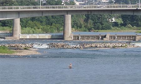 千曲川の鮎釣り